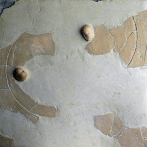 Mer des rives - 2007, plâtre et terre cuite, 80 x 80 cm